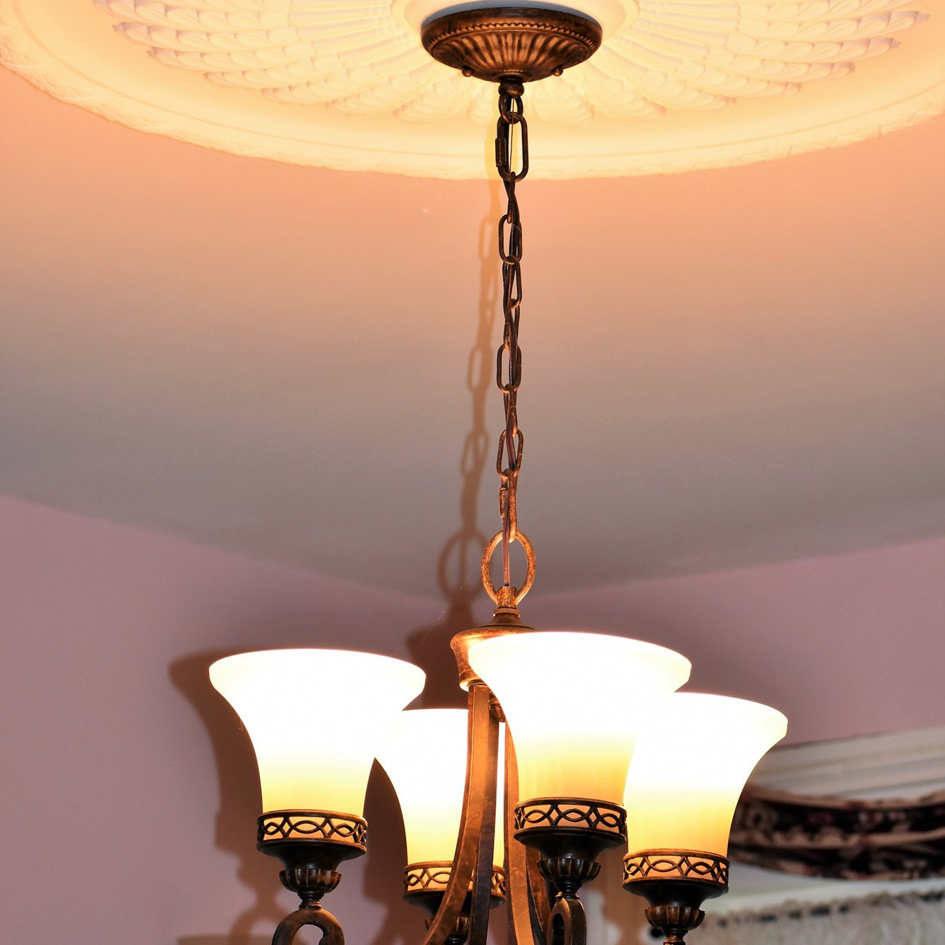 Cropsey Dining Room Chandelier Medaillon